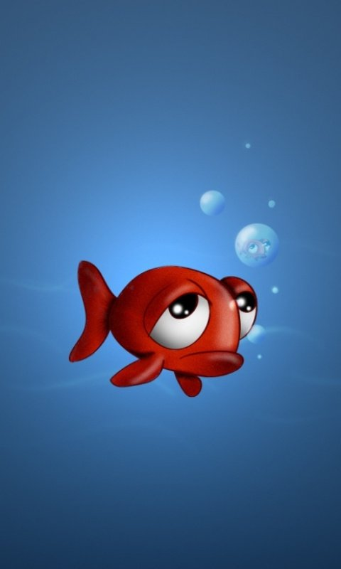 Cute Fish Mobile Phone Wallpapers 480x800 Cell Phone Hd Wallpapers 480x800