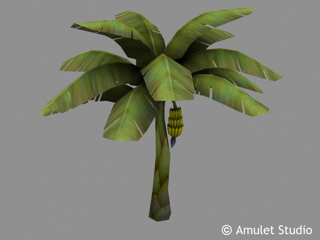art objects flowers plants banana tree c amulet studio add a comment 1280x960