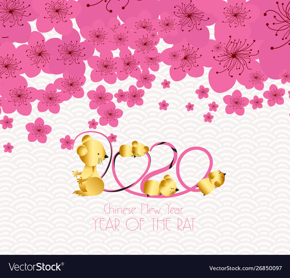 Chinese new year 2020   plum blossom background Vector Image 1000x960