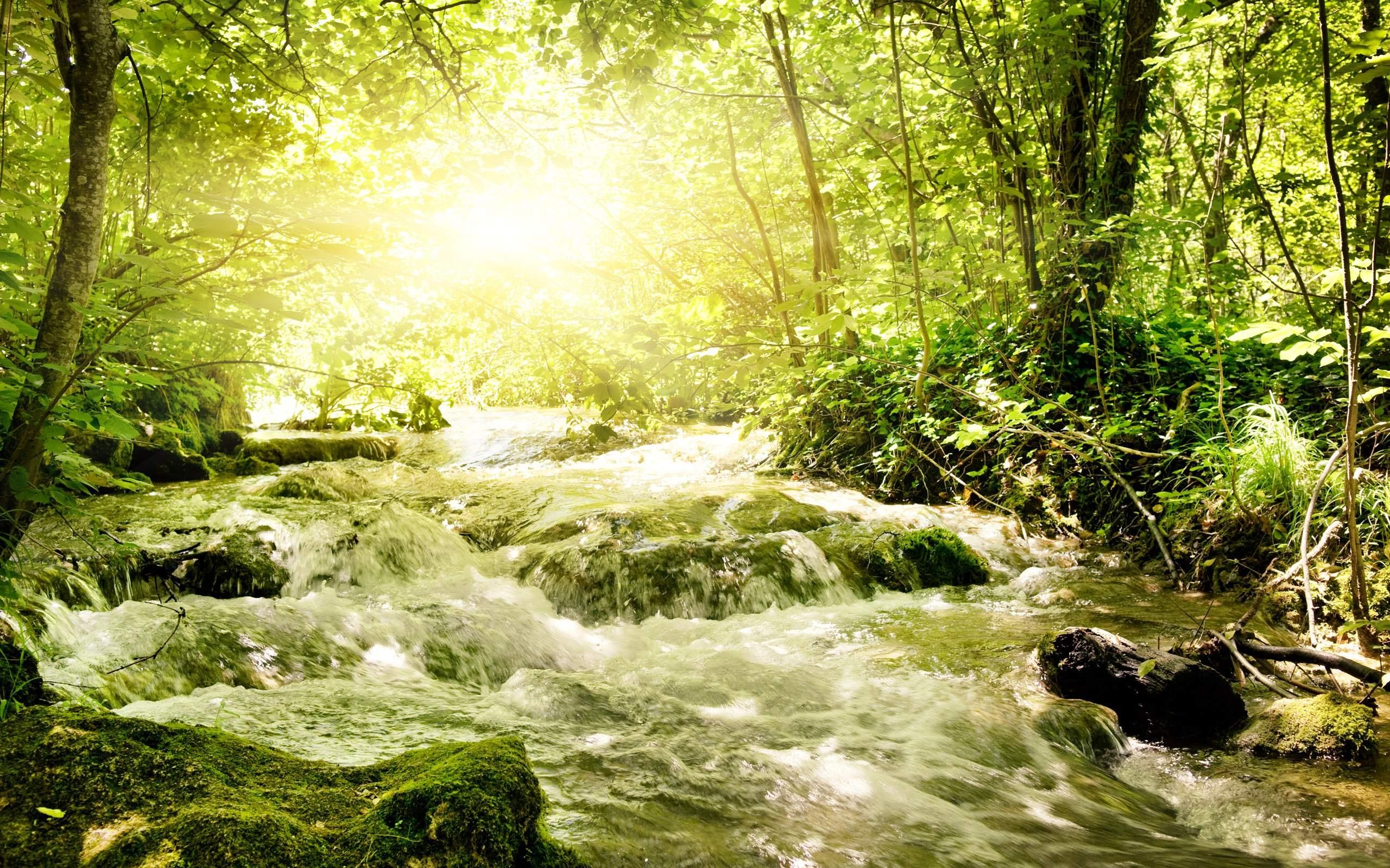 20 Beautiful Refreshing Spring Wallpapers 2560x1600