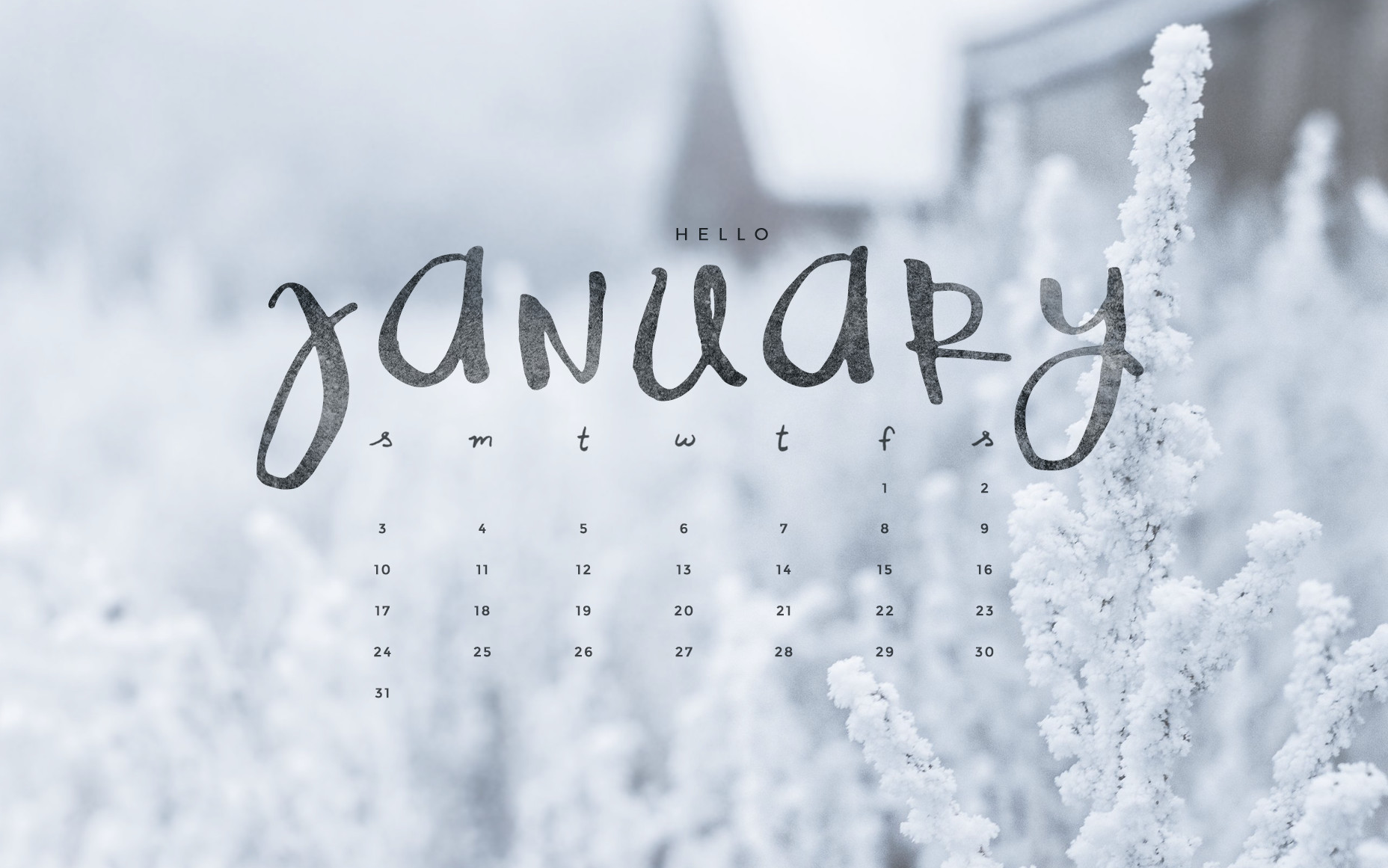 Hello January Downloadable Calendar Freebie   To Live 1856x1161
