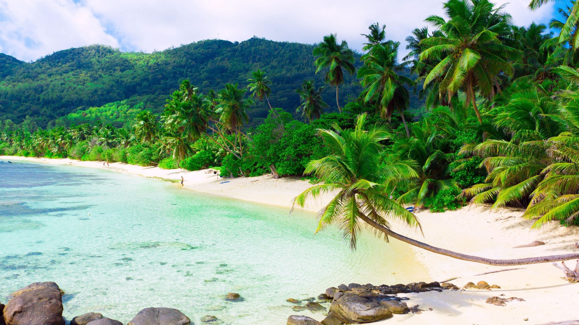 Beautiful Exotic Beach   High Definition Wallpapers   HD wallpapers 1920x1080