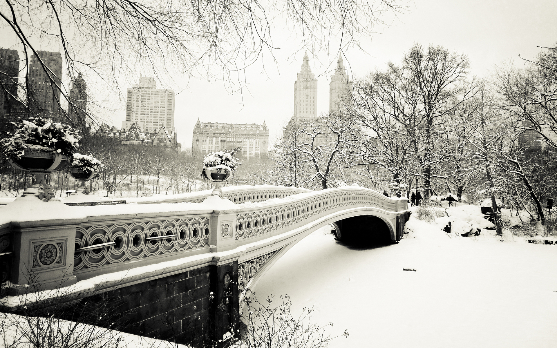 Free Download Bridges Cities Winter Black White Wallpaper