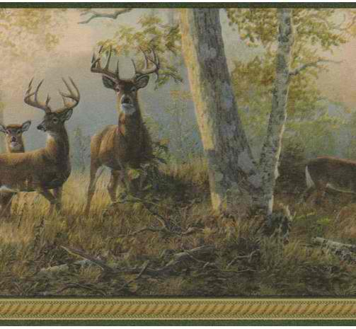 Green 418B349 Deer Wallpaper Border   Traditional WallpaperBorders 503x465