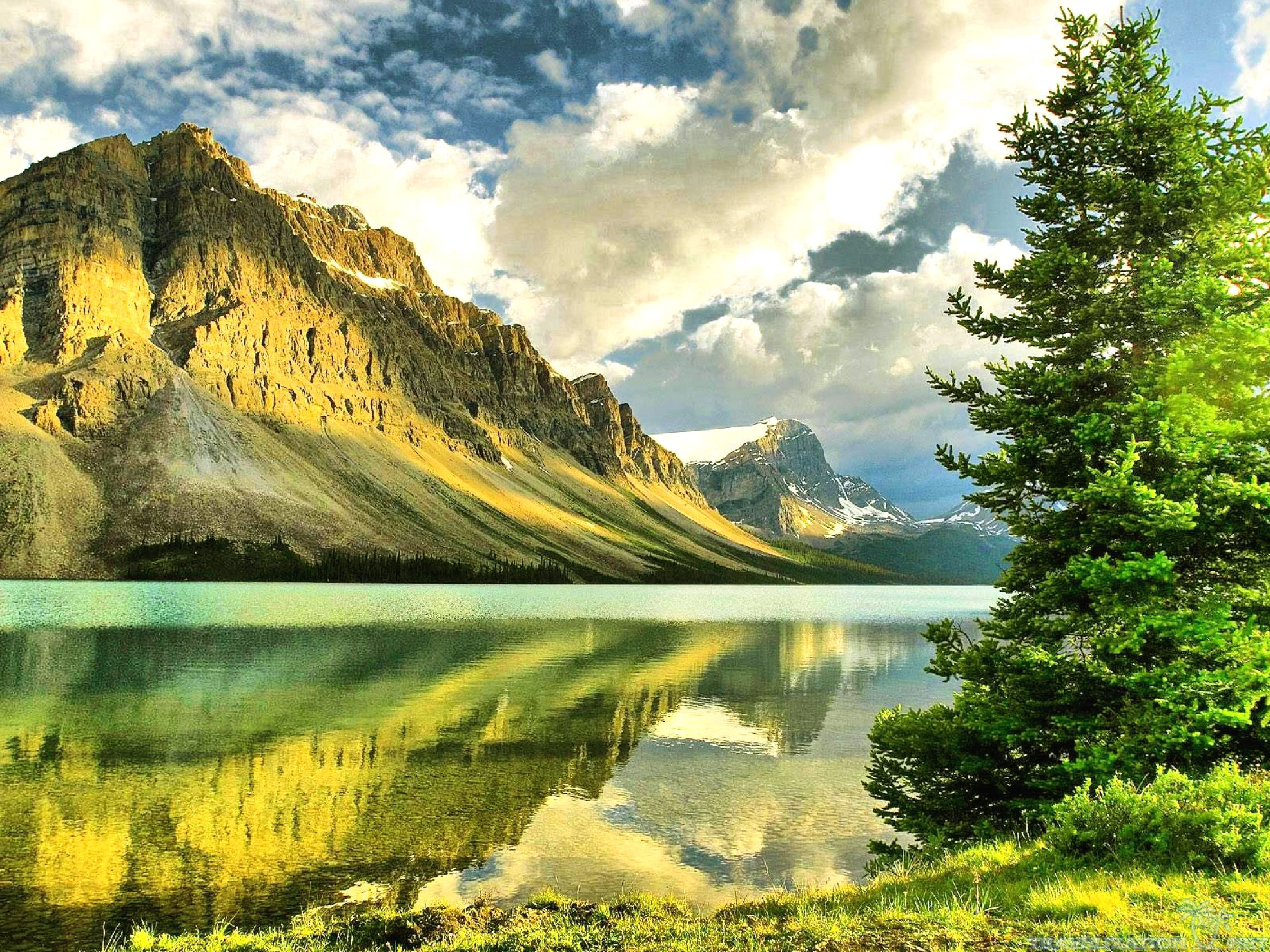 Free Download High Quality Nature Wallpapers For Pc Walljpegcom 2560x1920 For Your Desktop Mobile Tablet Explore 49 Nature Wallpapers High Resolution Beautiful Desktop Wallpapers And Backgrounds The Most Wonderful