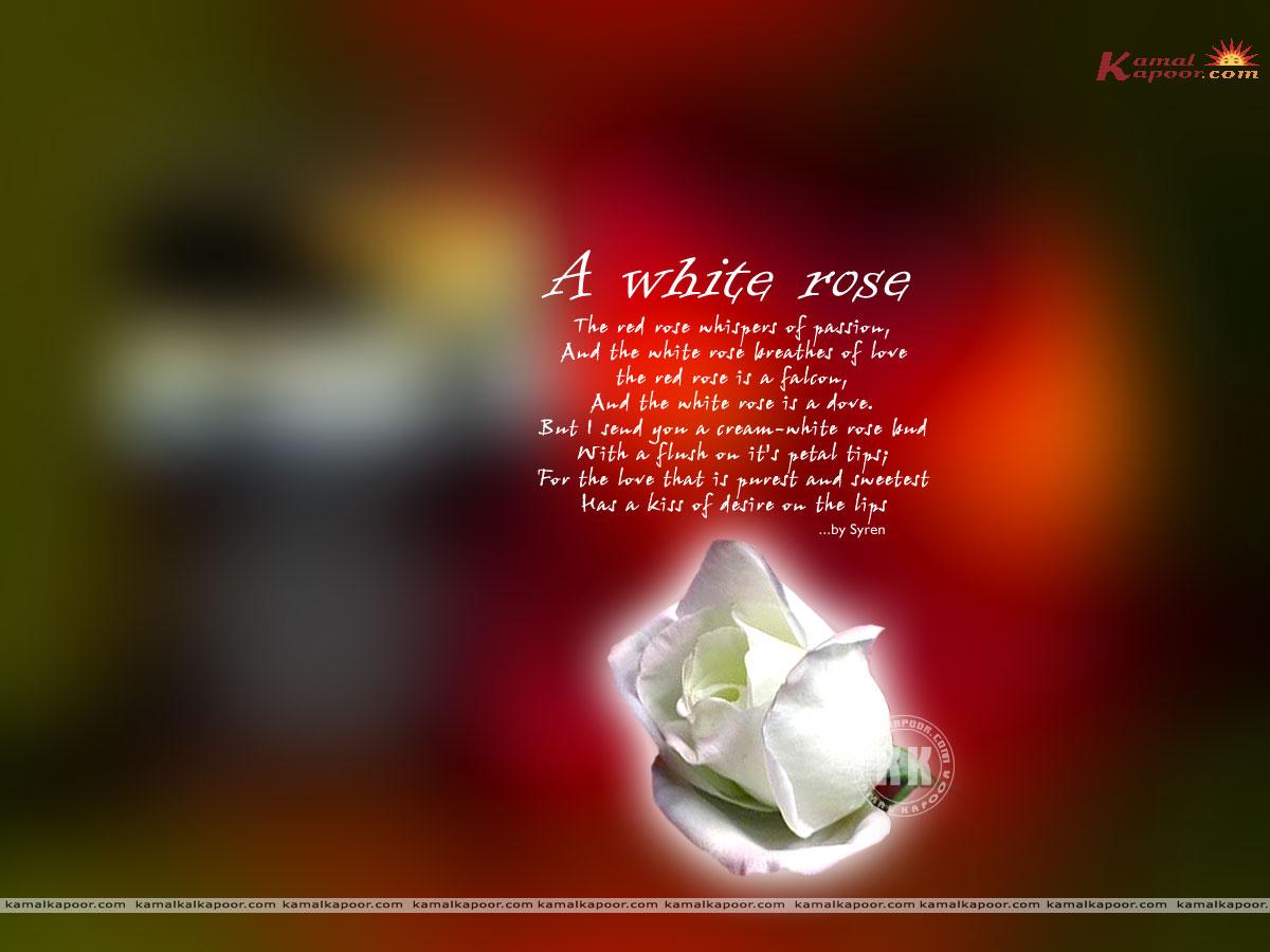 Love Poems Wallpaper