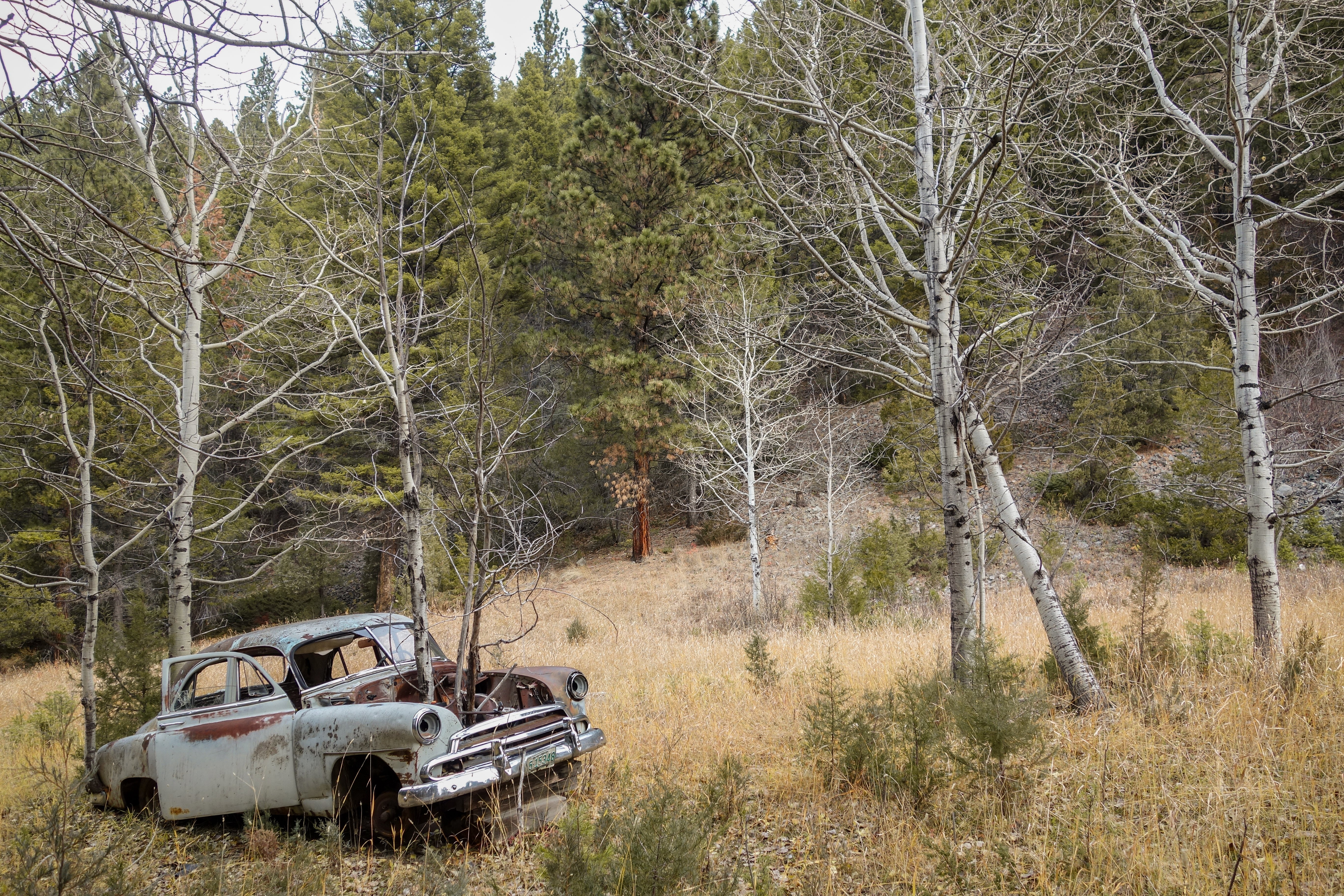 Old Rusty Car Wallpapers for Laptops 5411   HD Wallpapers Site 5472x3648