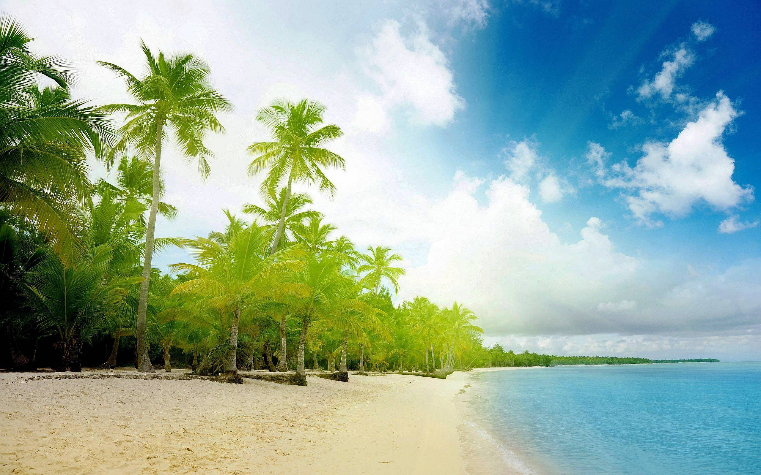 Exotic Beach Wallpapers 2560x1600