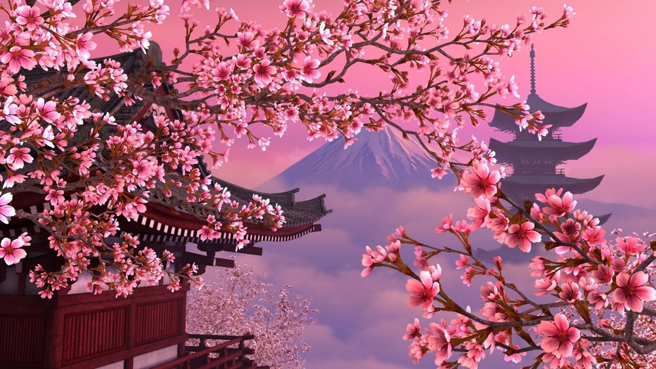 Free Download Pink Cherry Blossoms Wallpapers Hd Hd Desktop