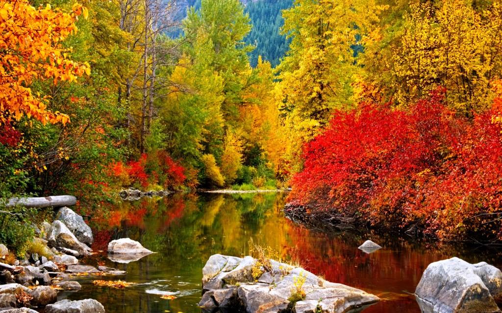 autumn desktop wallpapers backgrounds   SF Wallpaper 1024x640