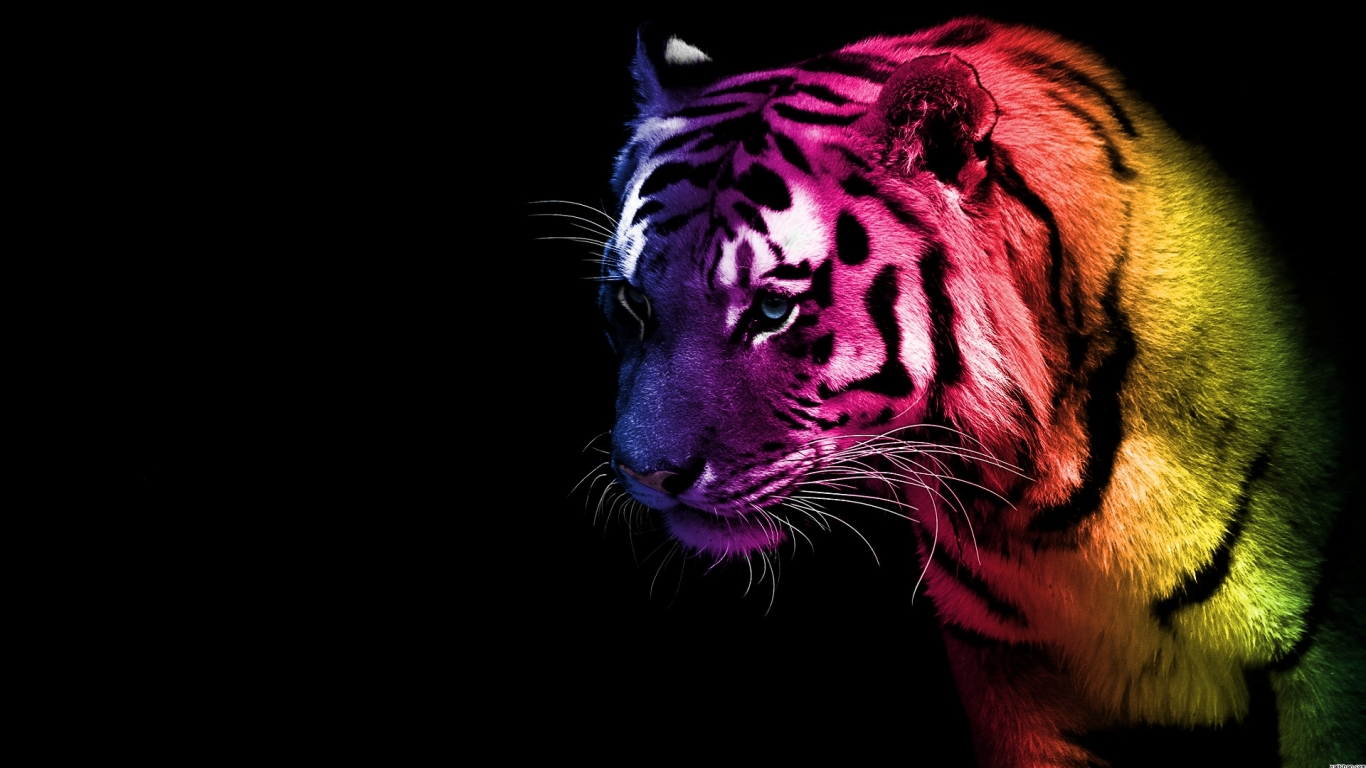 Wallpaper Bengal Tiger Hd Animals 10217: 1366x768 HD Desktop Wallpapers Animals