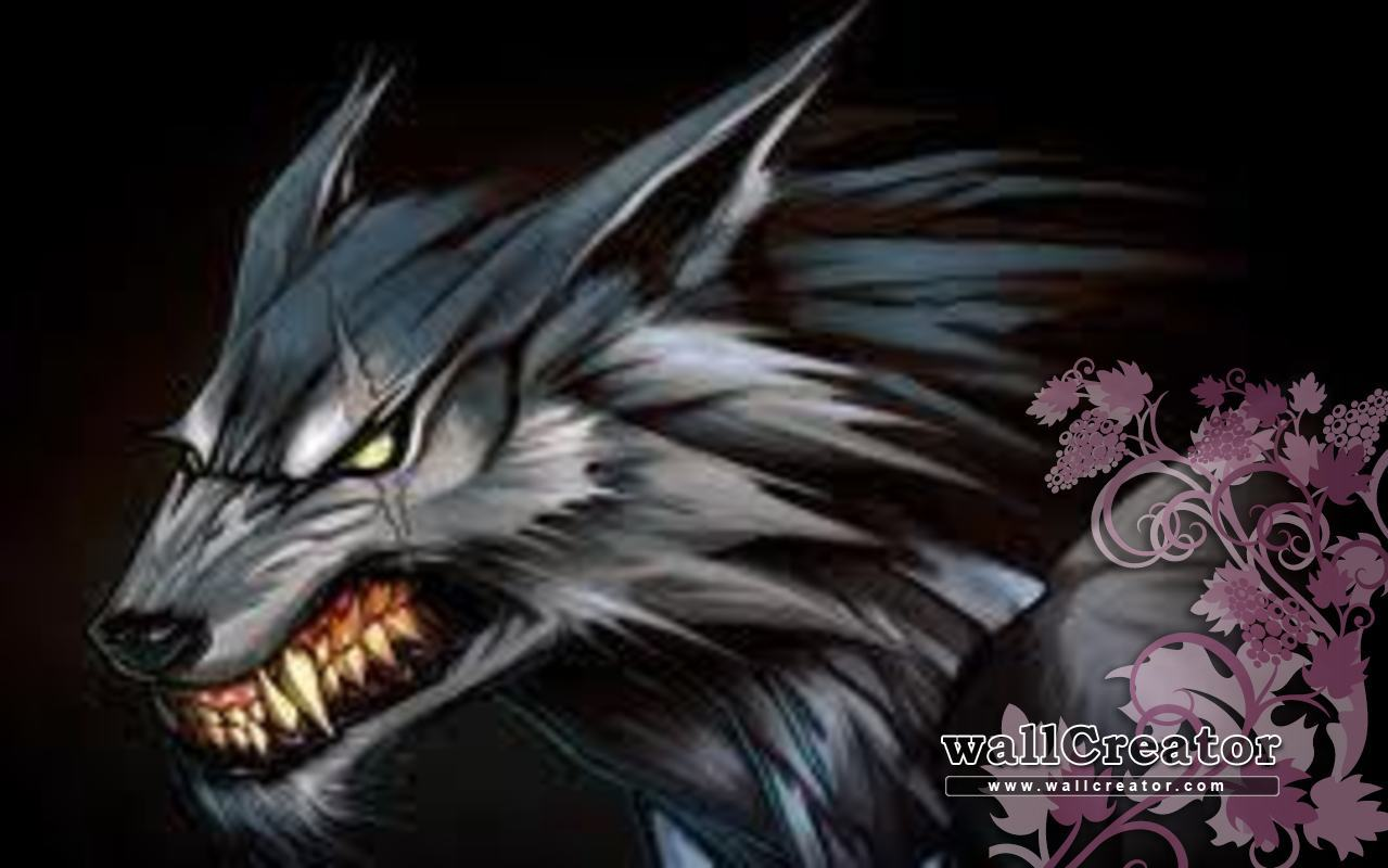 Really Cool Wolf Backgrounds Download this wallpaper 1279x800
