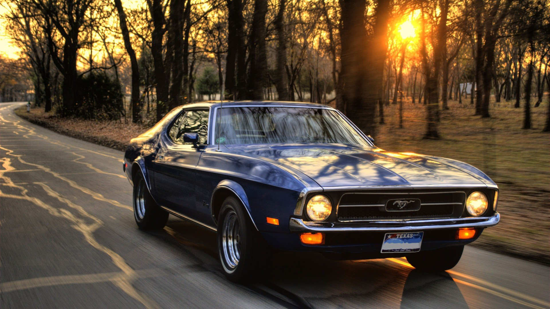 Muscle Cars Wallpaper The Wallpaper