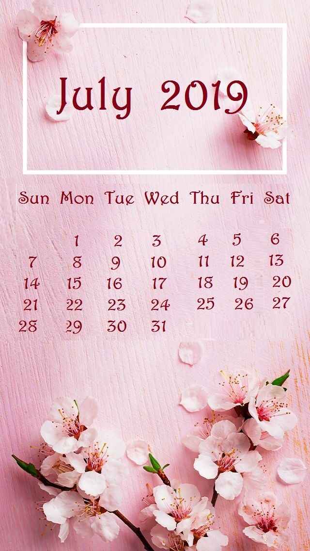 July 2019 Baby pink Background iPhone Calendar july 640x1136