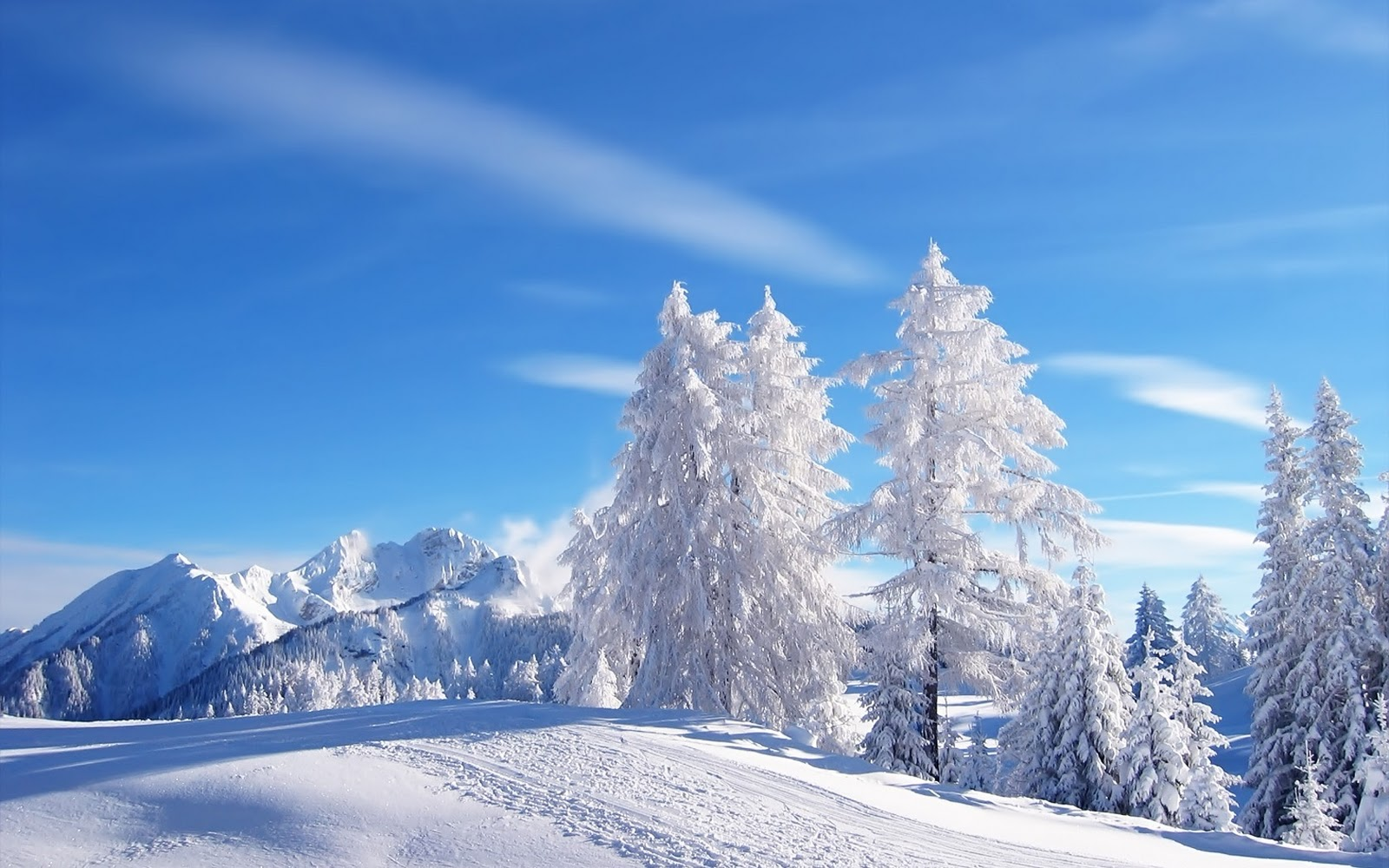 Winter Scenery PowerPoint Background  4 1600x1000