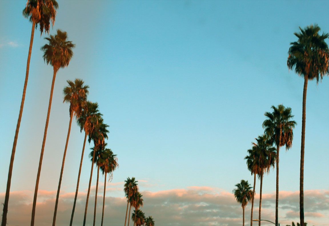 Tumblr California Desktop Wallpapers   Top Tumblr California 1152x793