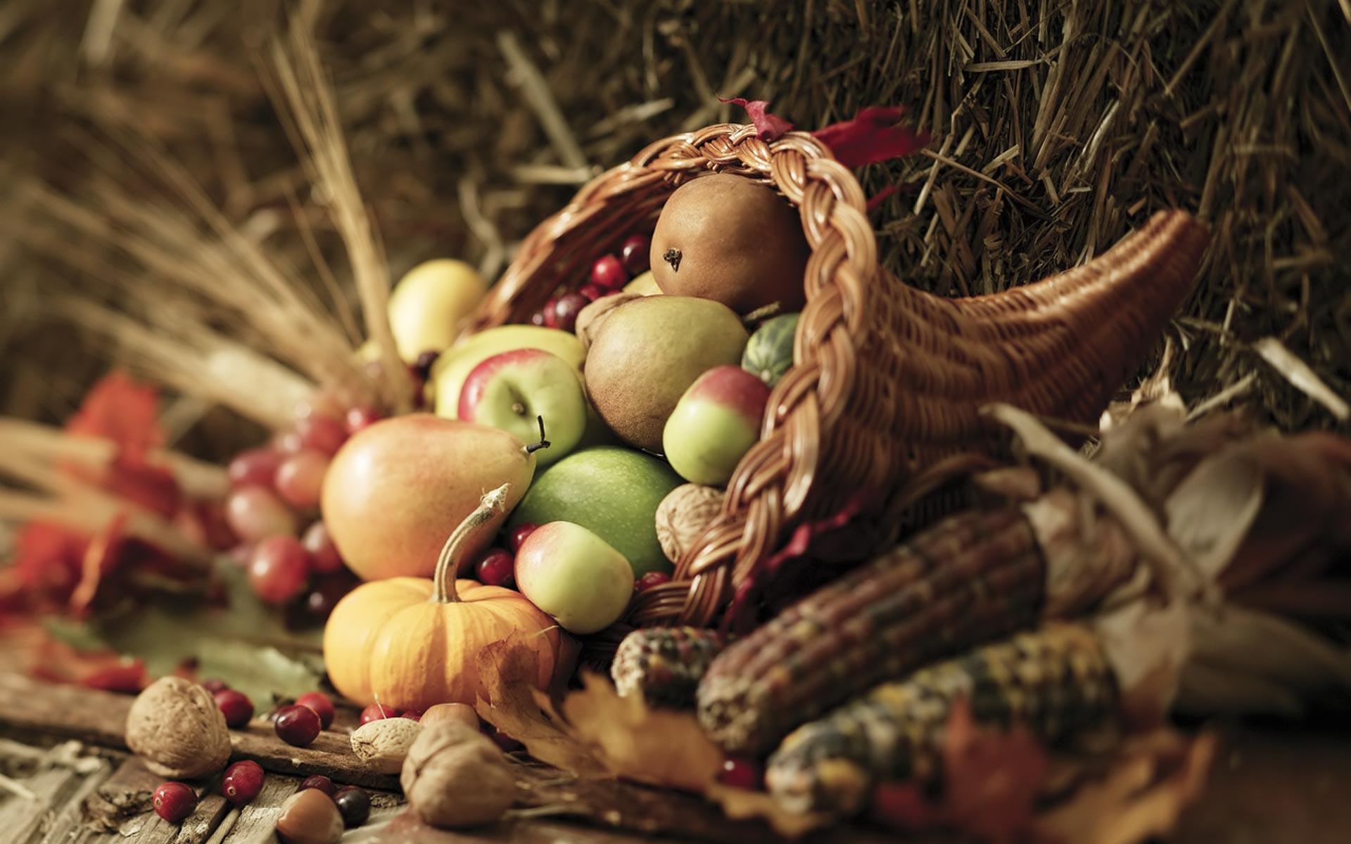 Desktop Wallpapers Thanksgiving Holiday 1920x1200