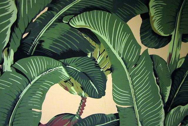 Martinique Banana Leaf wallpaper The Beverly Hills Hotel Pinterest 640x427