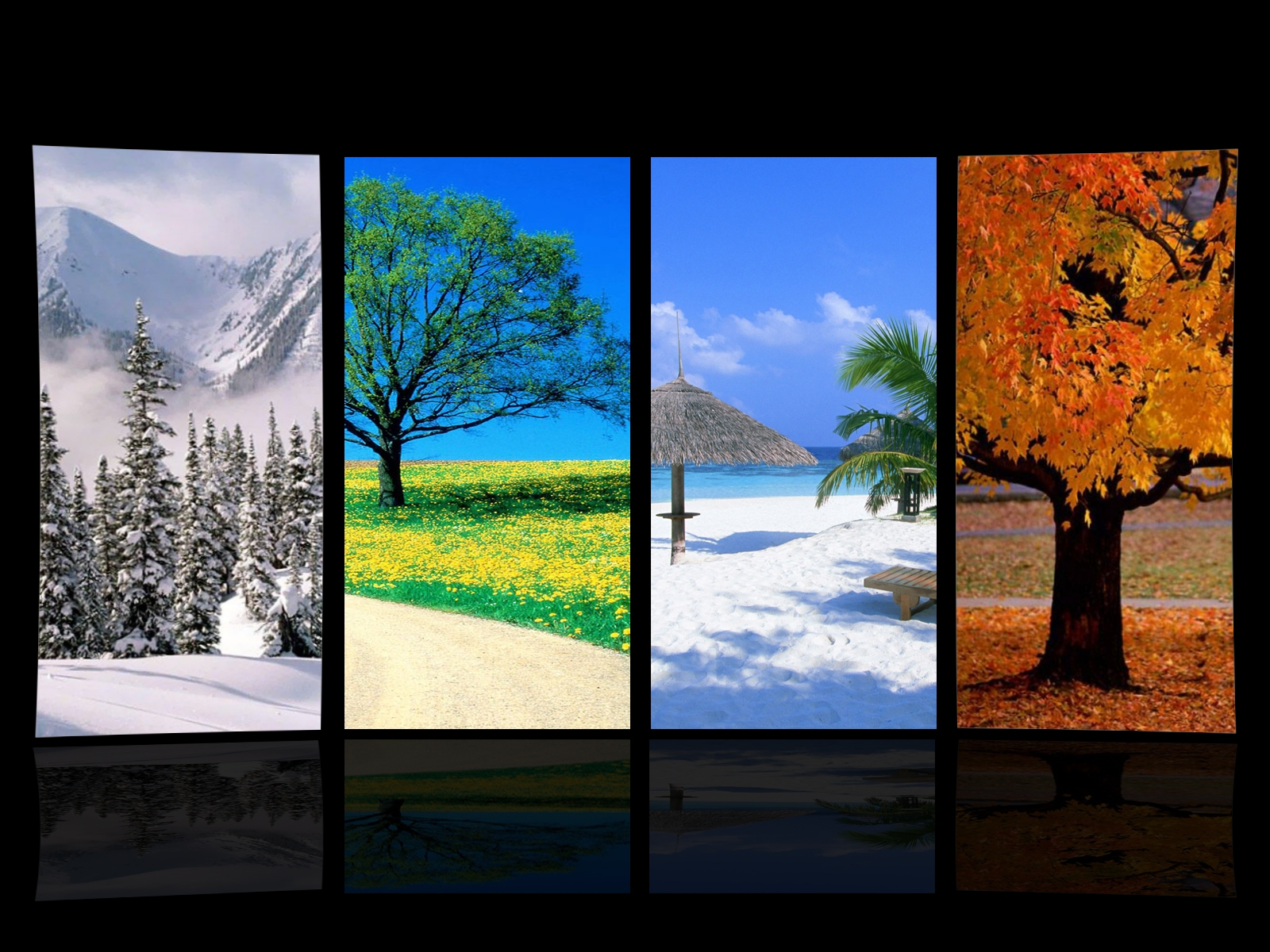 1600x1200 Four Seasons Wallpaper Download 1600x1200