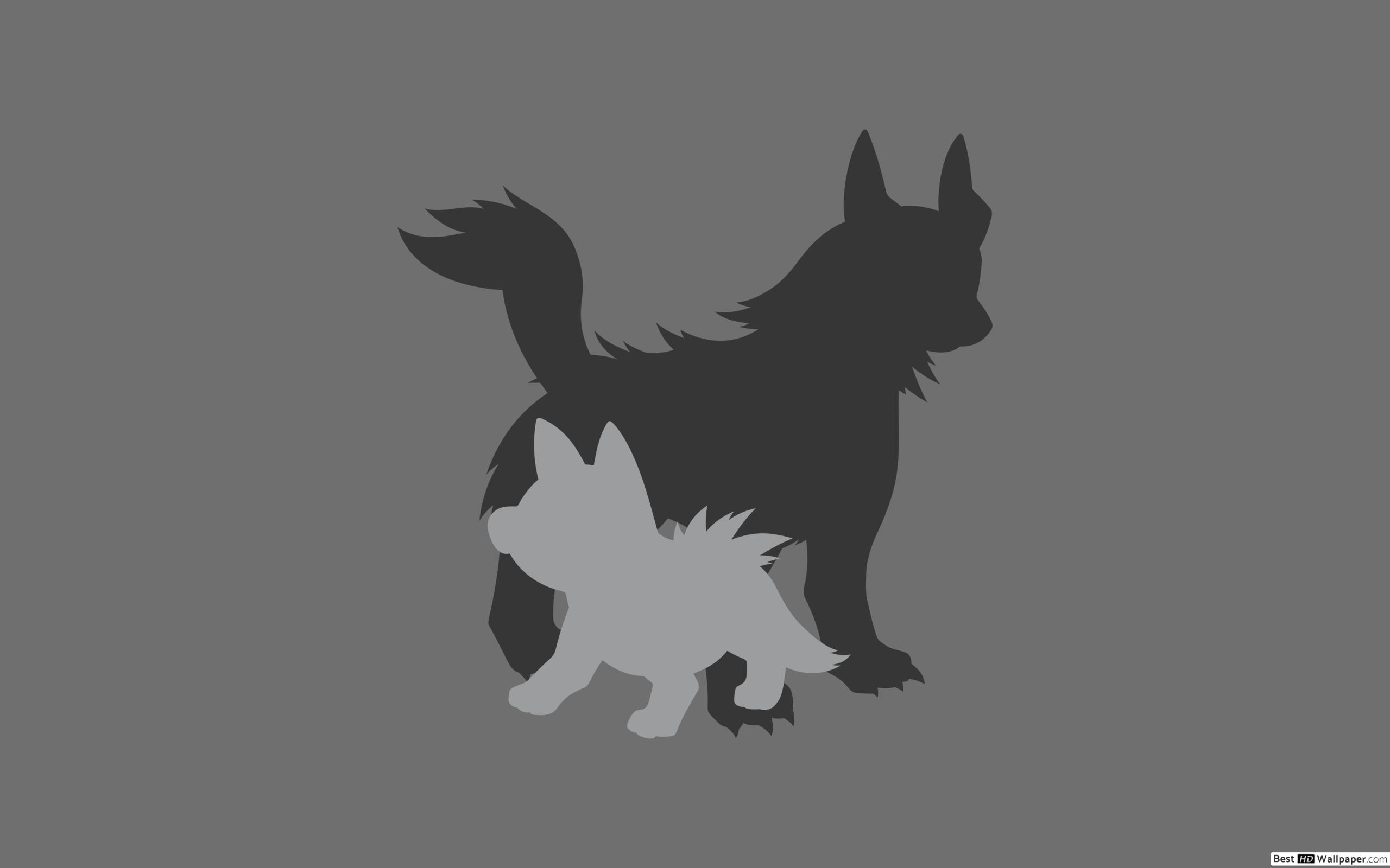 Mightyena and Poochyena of Pokemon HD wallpaper download 2560x1600