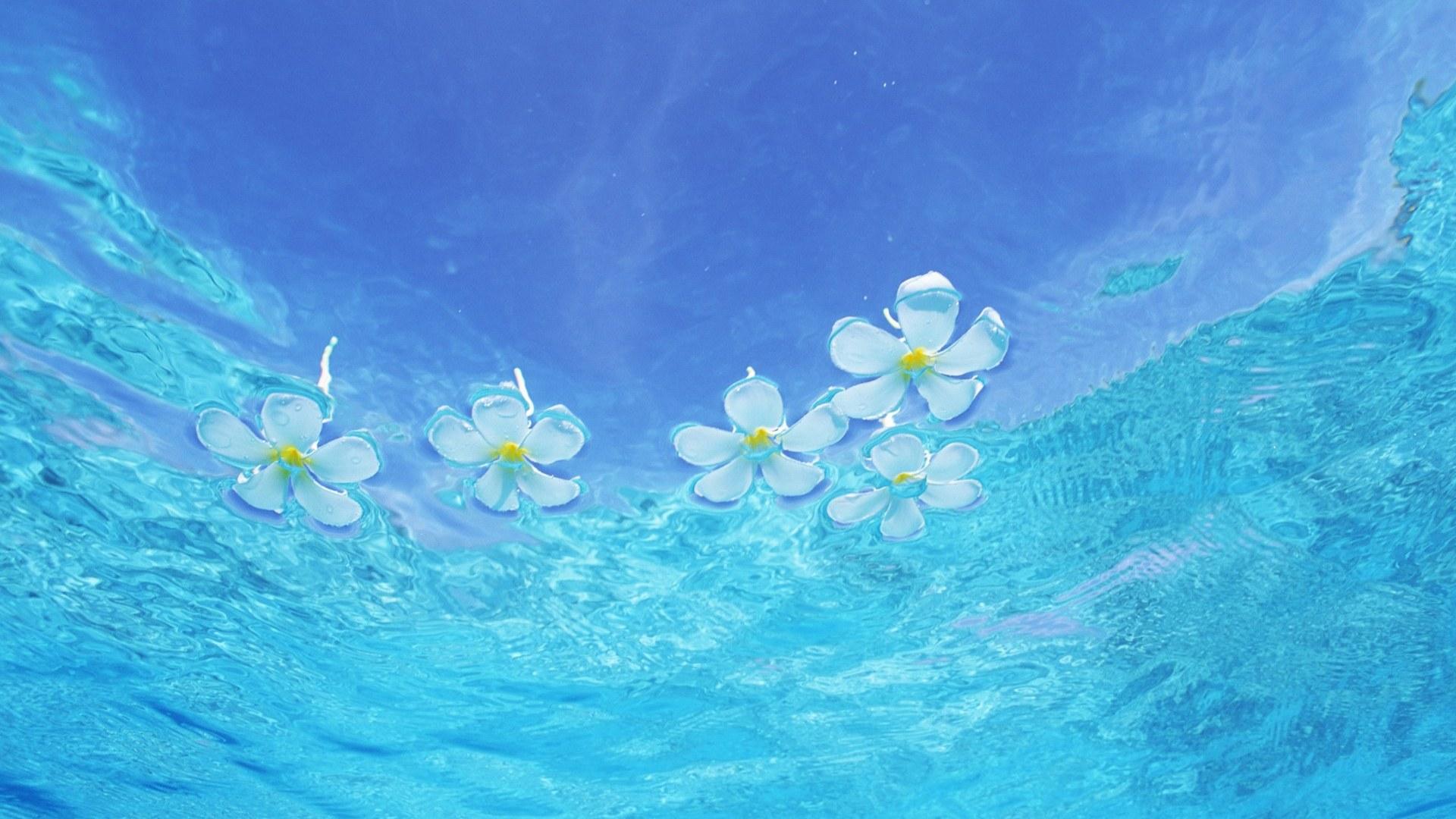 Water Computer Wallpapers Desktop Backgrounds 1920x1080 1920x1080