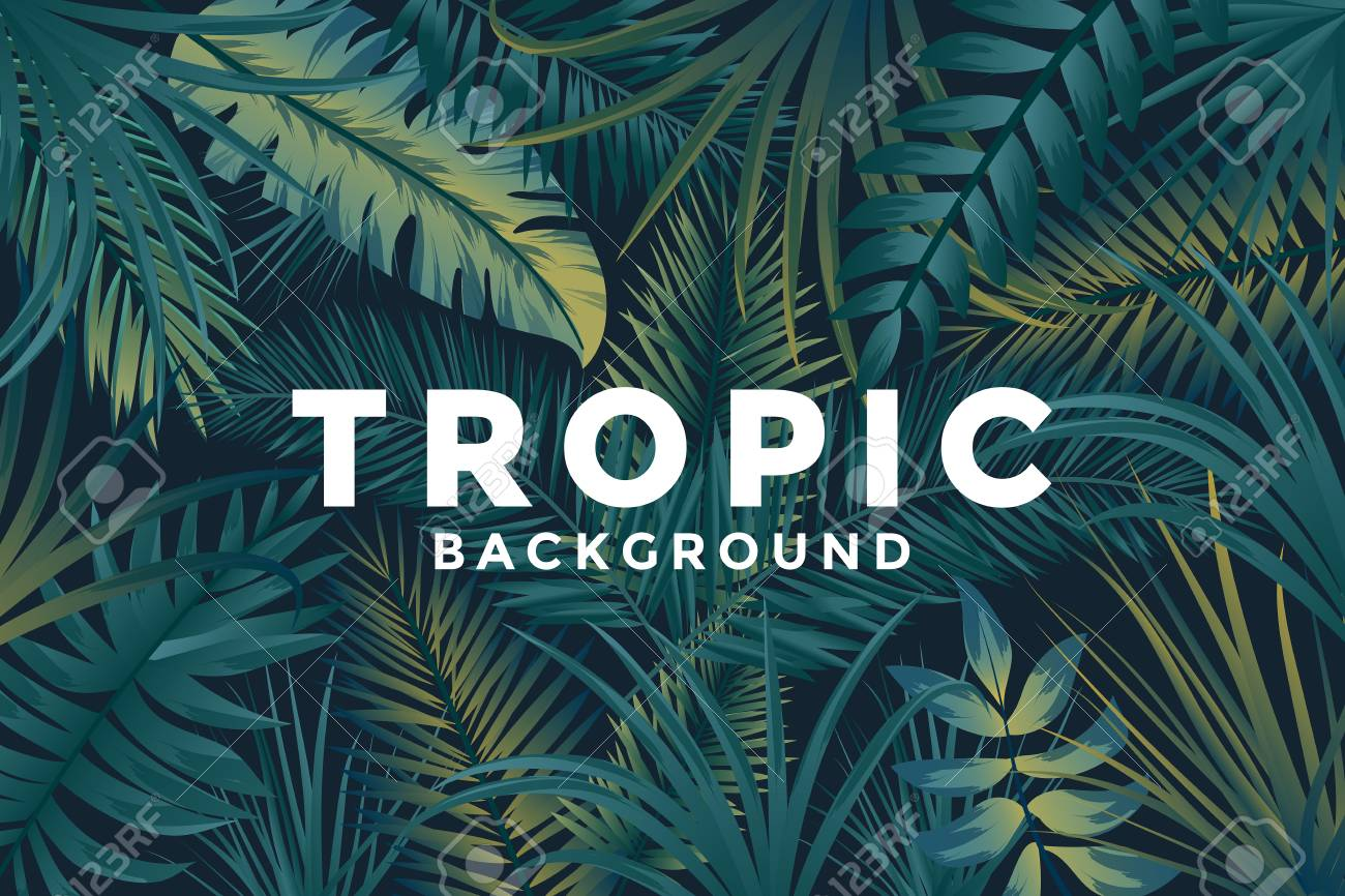 Tropical Background With Jungle Plants Trendy Background With 1300x866
