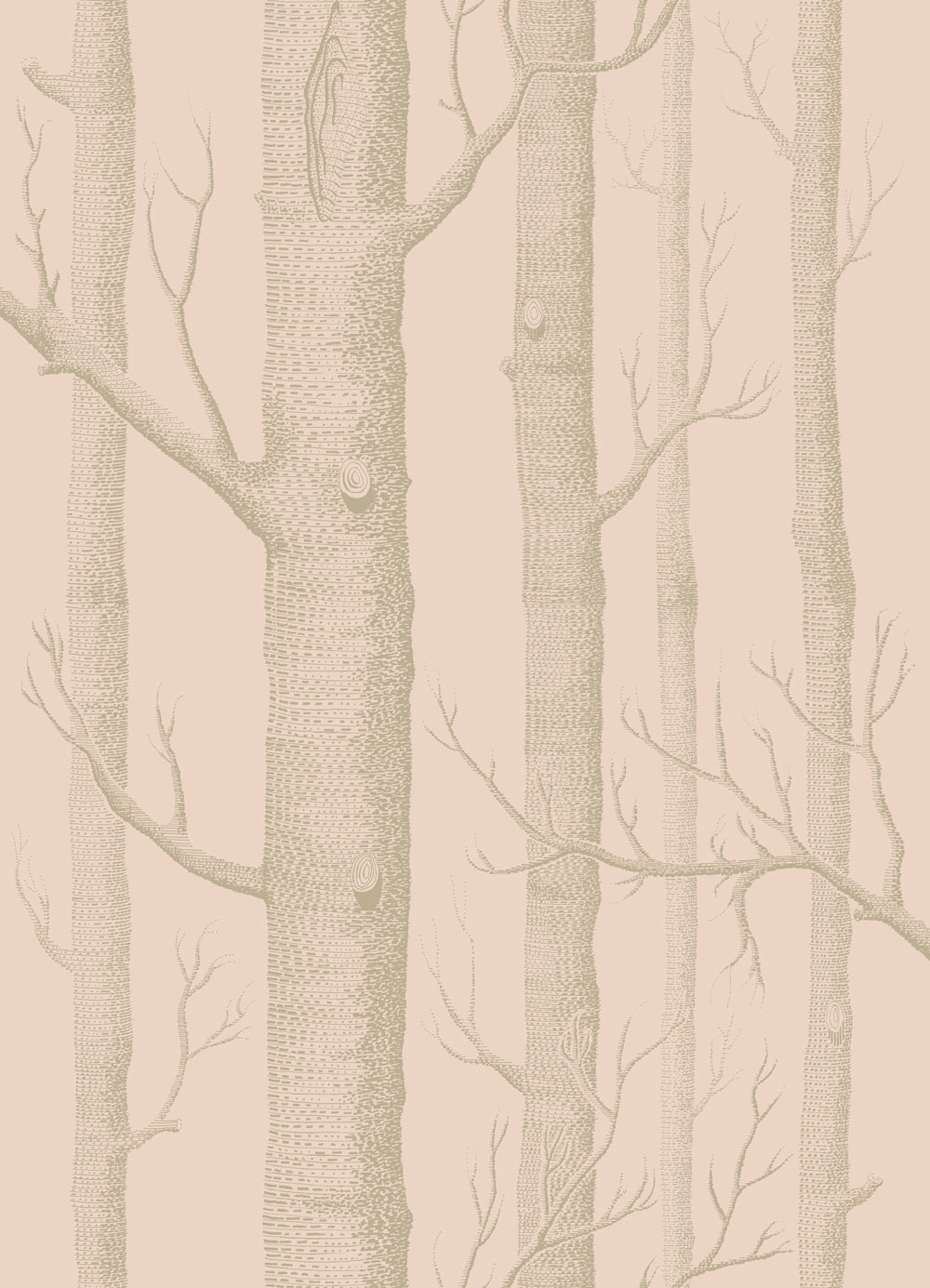 Woods by Cole Son   Pink and Gilver   Wallpaper Wallpaper Direct 1000x1385
