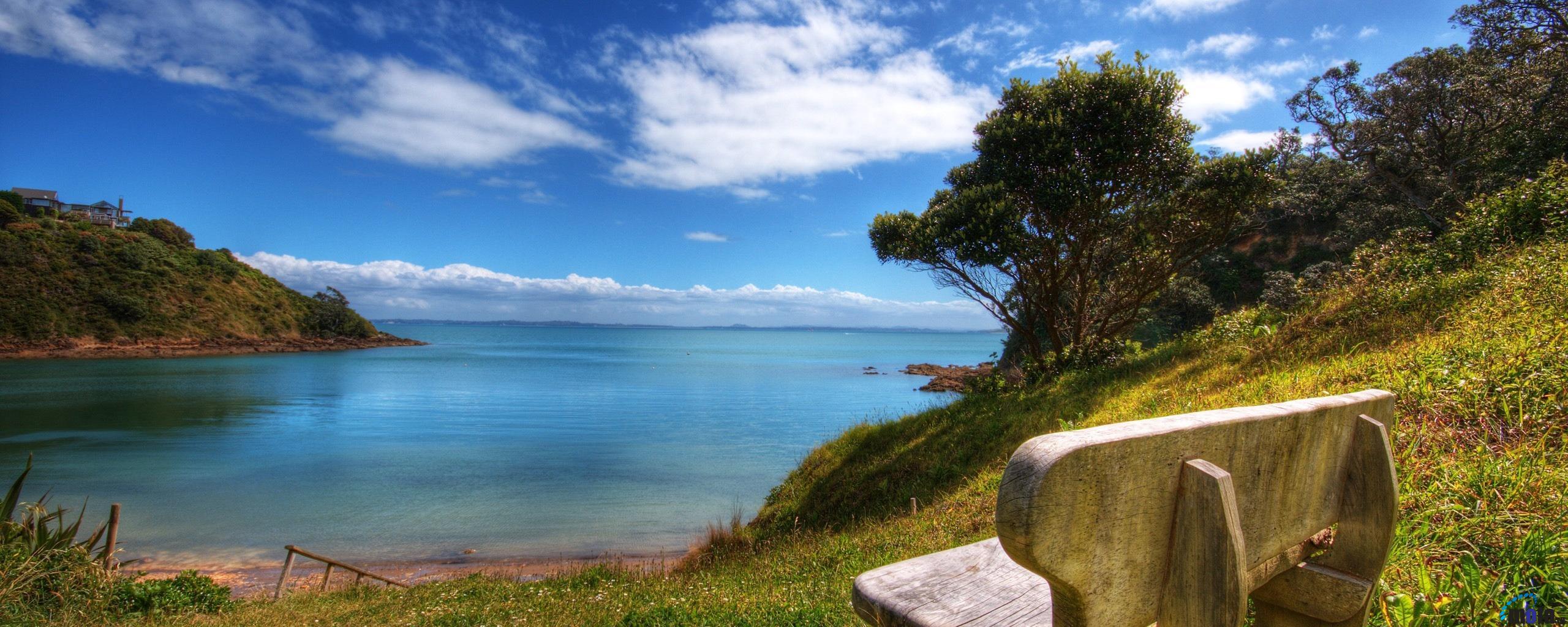 Palm Beach Bungalows   Waiheke Island Accommodation at Palm Beach 2560x1024