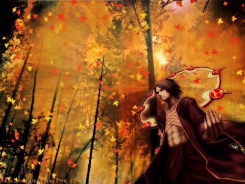 Anime Wallpaper Raijin Surveys the Fall   Minitokyo 500x375