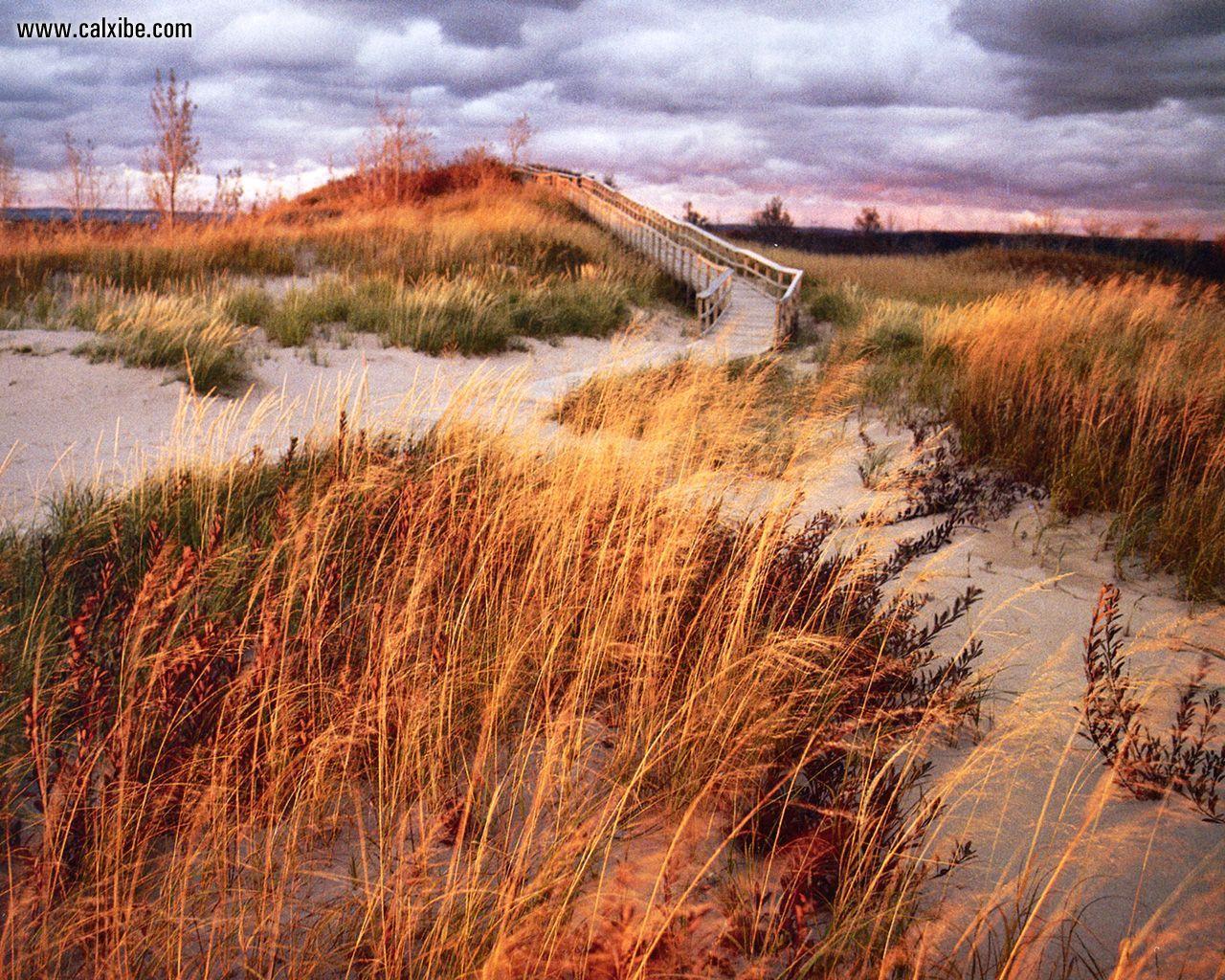 Nature Michigan Sleeping Bear Dunes boardwalk picture nr 5493 1280x1024