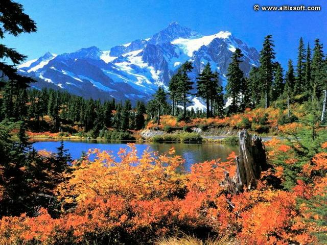 wallpaper zh Nature screensavers 640x480