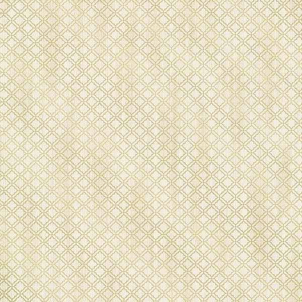 Berkeley Beige Trellis   Modern   Wallpaper   by Wallpaper Warehouse 600x600