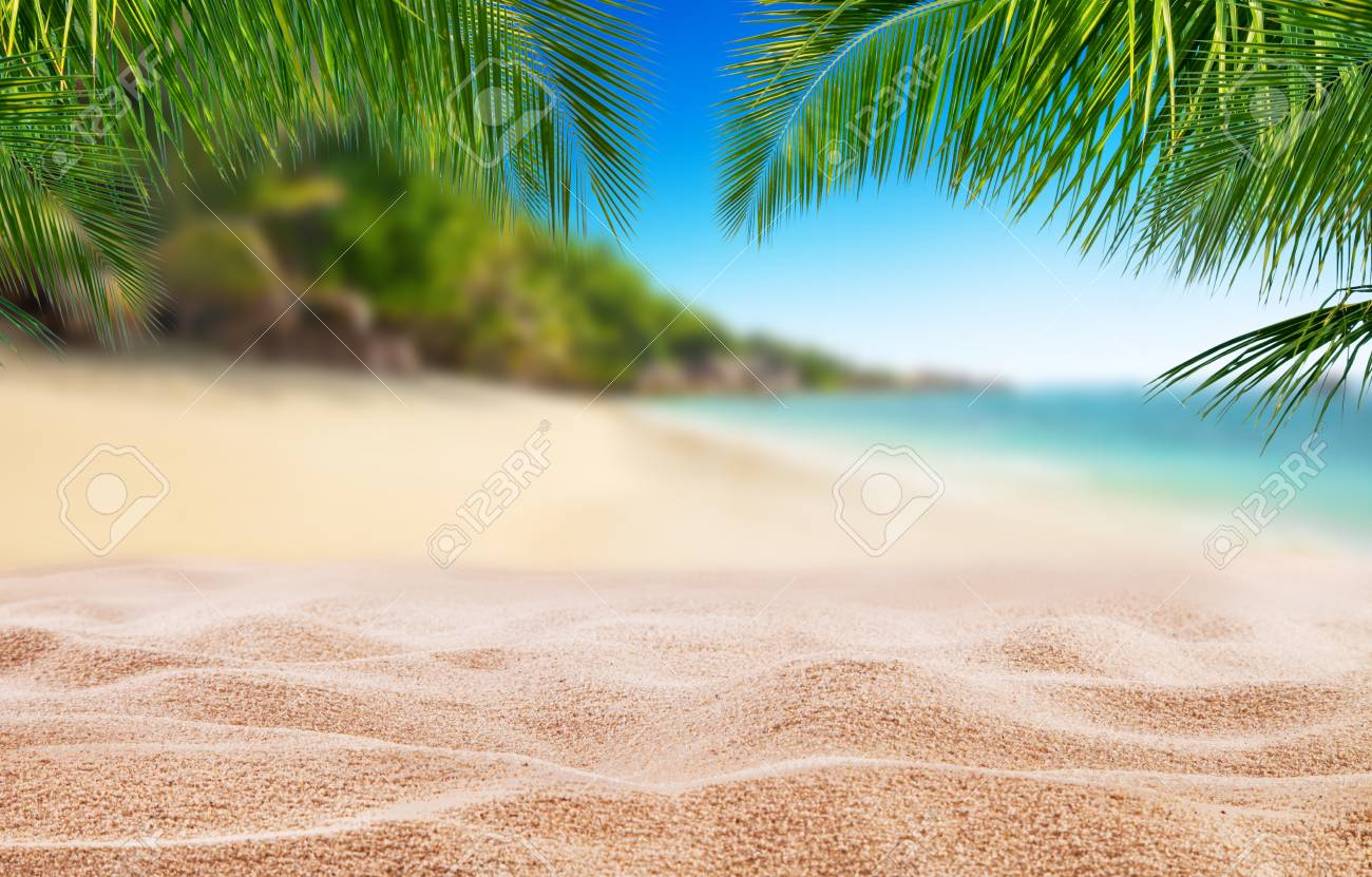 Tropical Beach With Sand Summer Holiday Background Travel And 1300x831