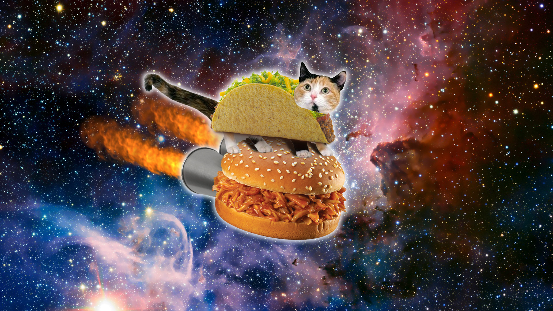 Taco Cat in Space by Jayro Jones 1920x1080