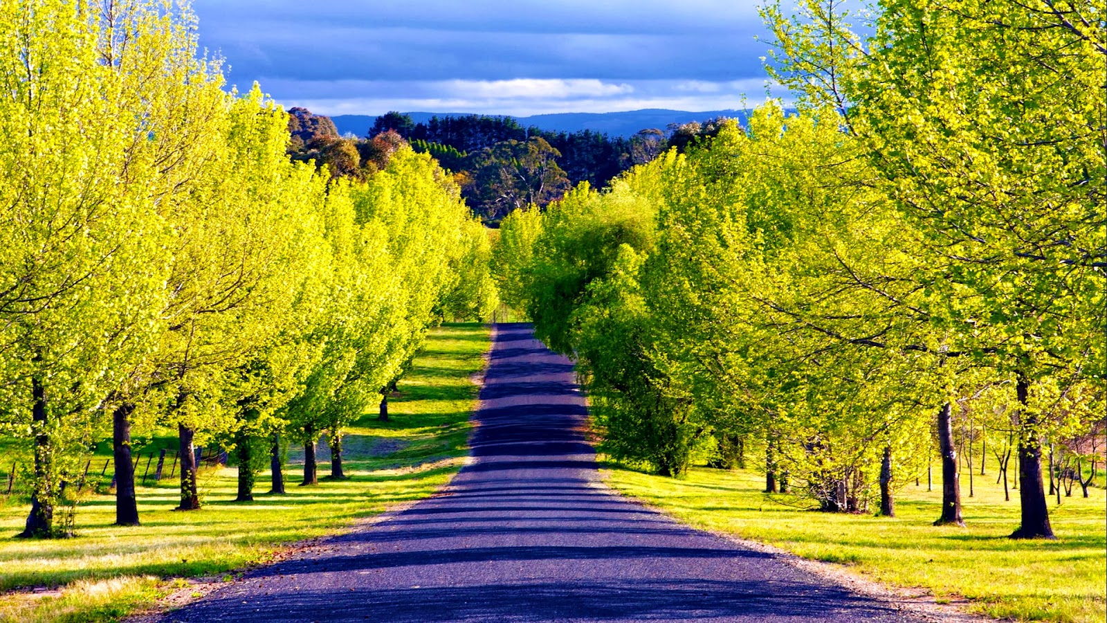 Pathway Wallpapers Most beautiful places in the world Download 1600x900