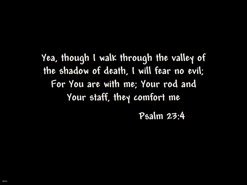 Psalms Part One psalm 234 1024x768