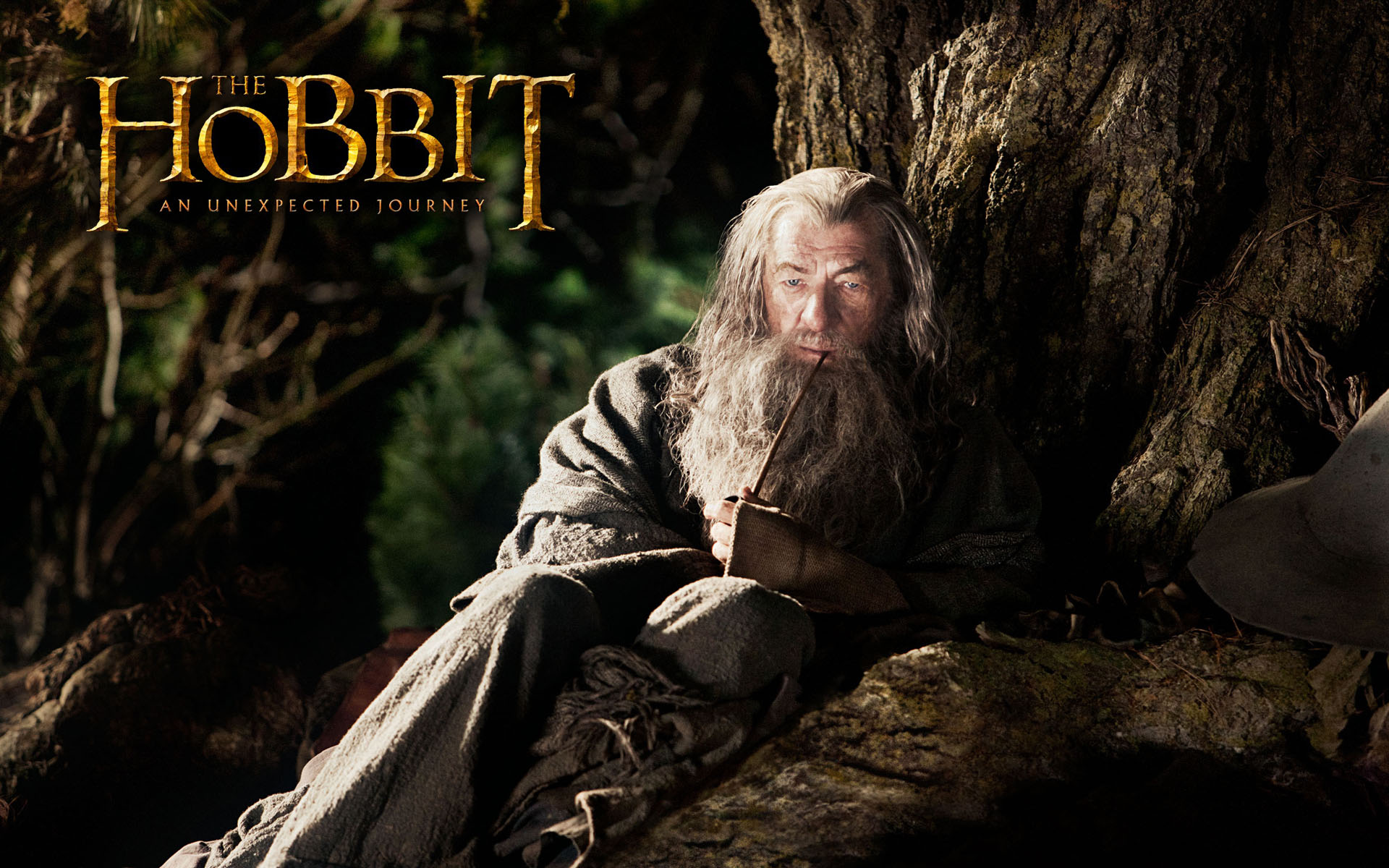 The Hobbit Wallpaper 1920x1200 Wallpapers 1920x1200 Wallpapers 1920x1200
