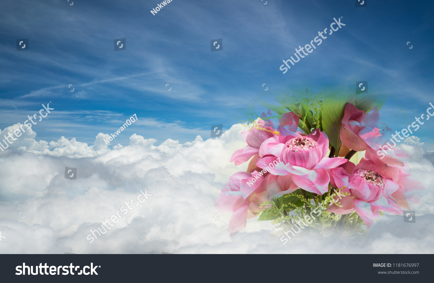 Pink Fresh Lotus Flowers Bouquet On Stock Photo Edit Now 1181676997 1500x978