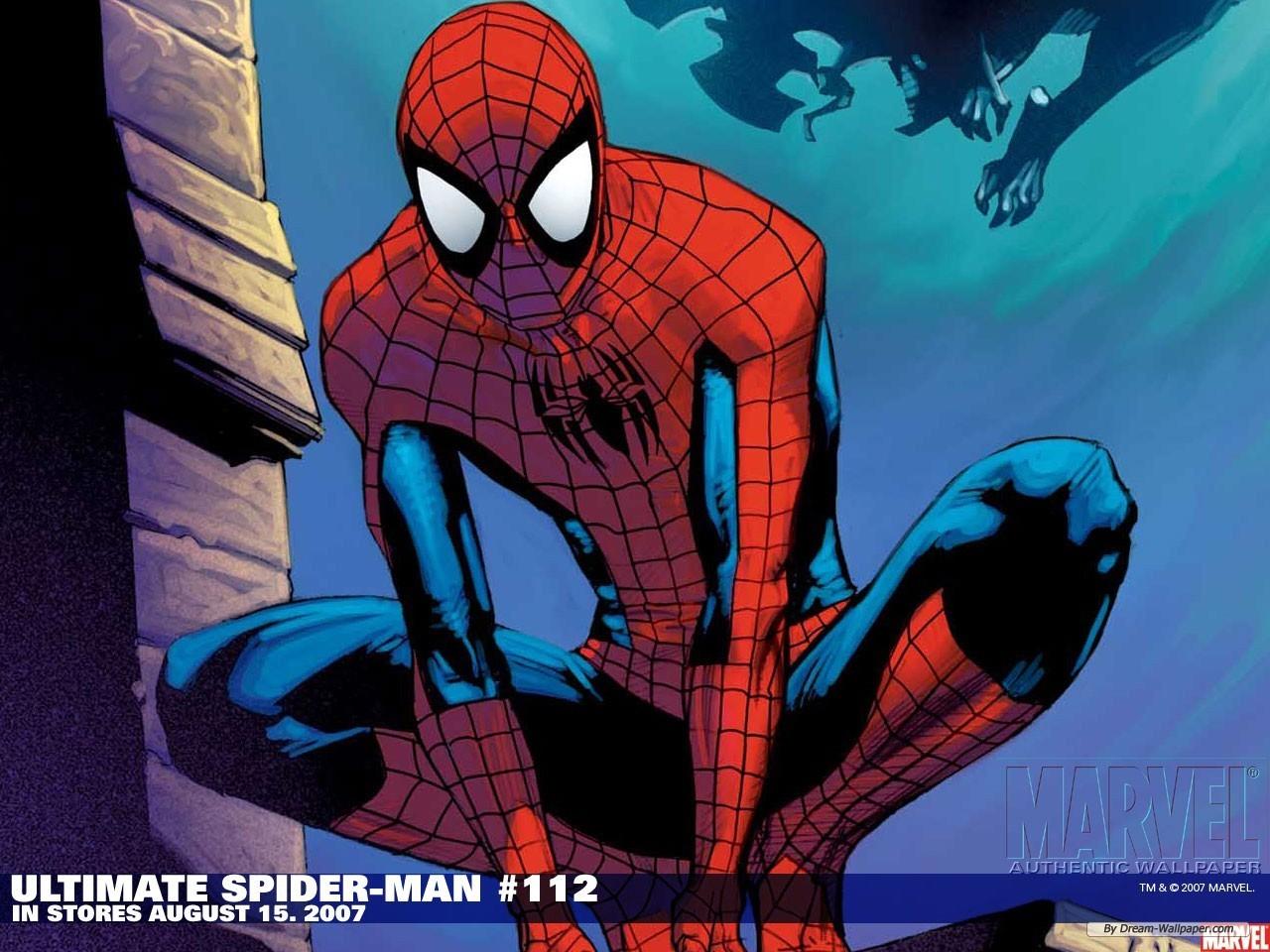 Wallpaper Cartoon wallpaper Spiderman wallpaper 1280x960