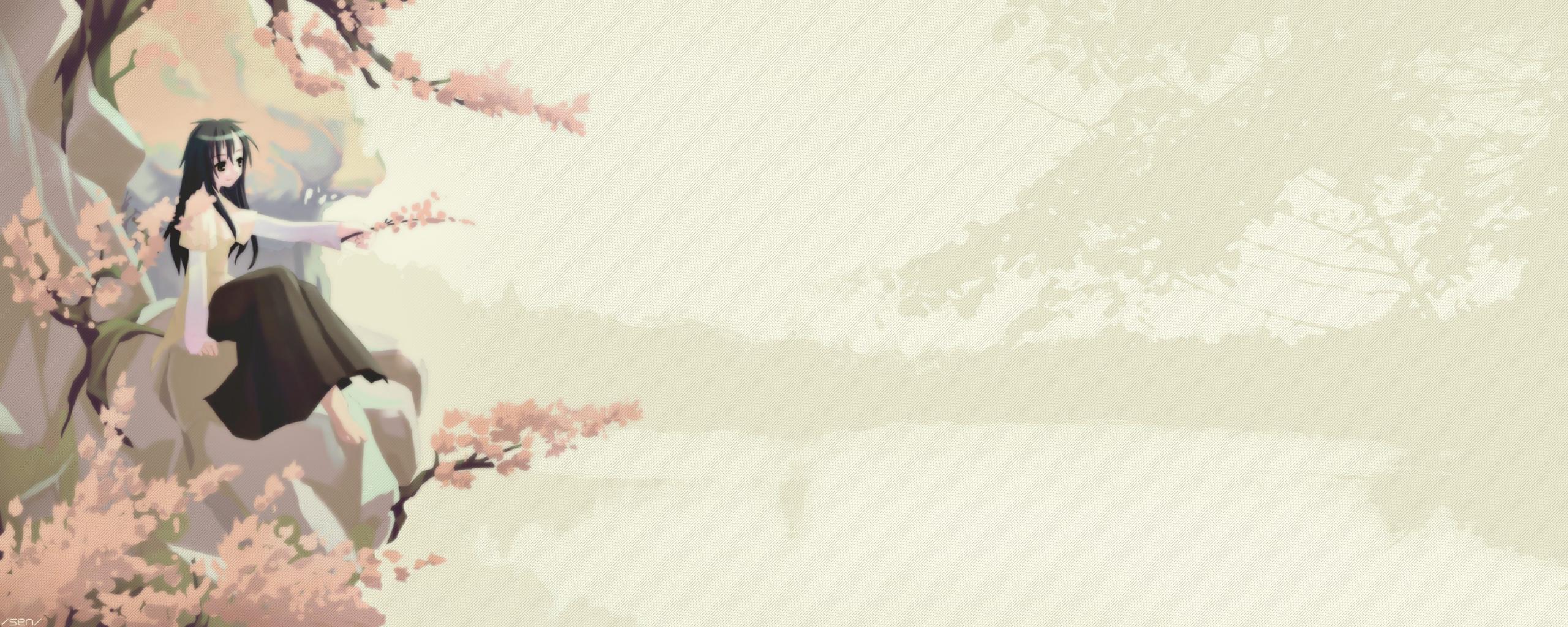 Anime Cherry Blossoms Wallpaper Dual cherry wallpaper 2560x1024