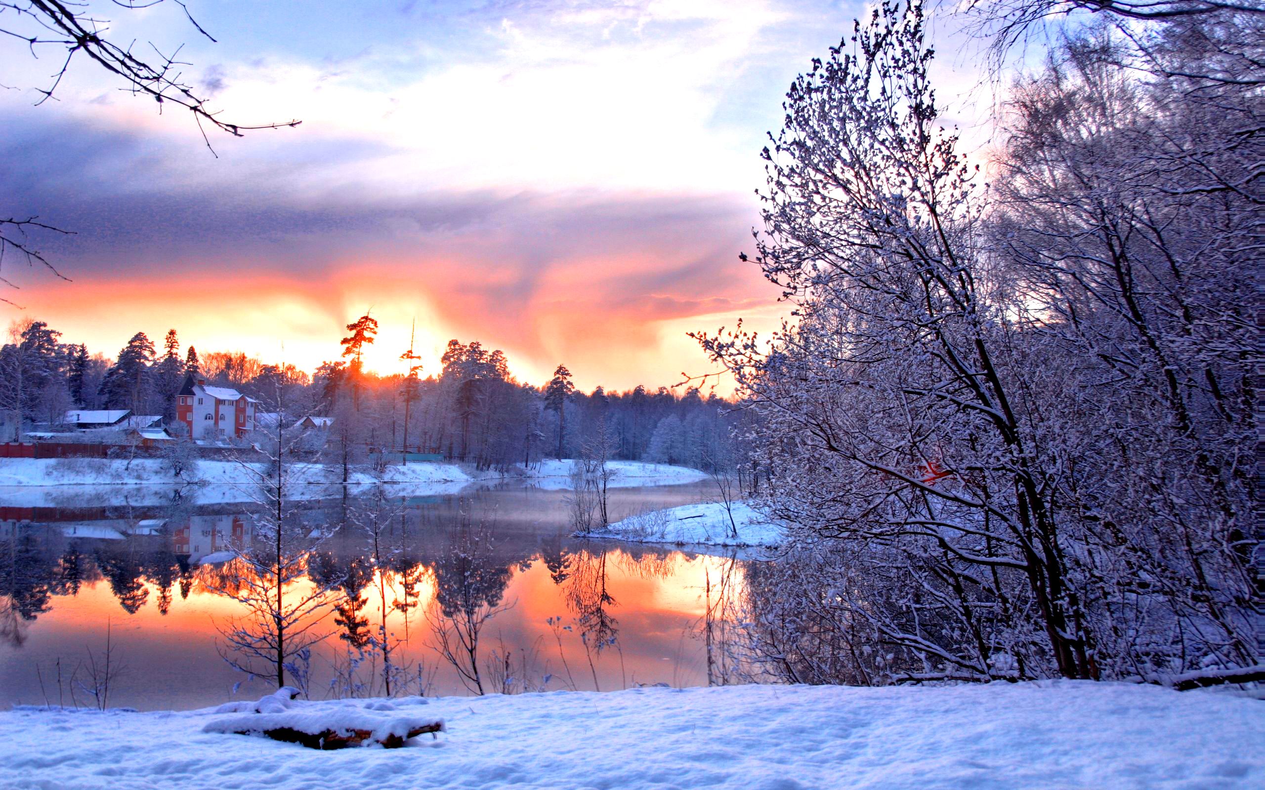 Beautiful Winter wallpaper   ForWallpapercom 2560x1600