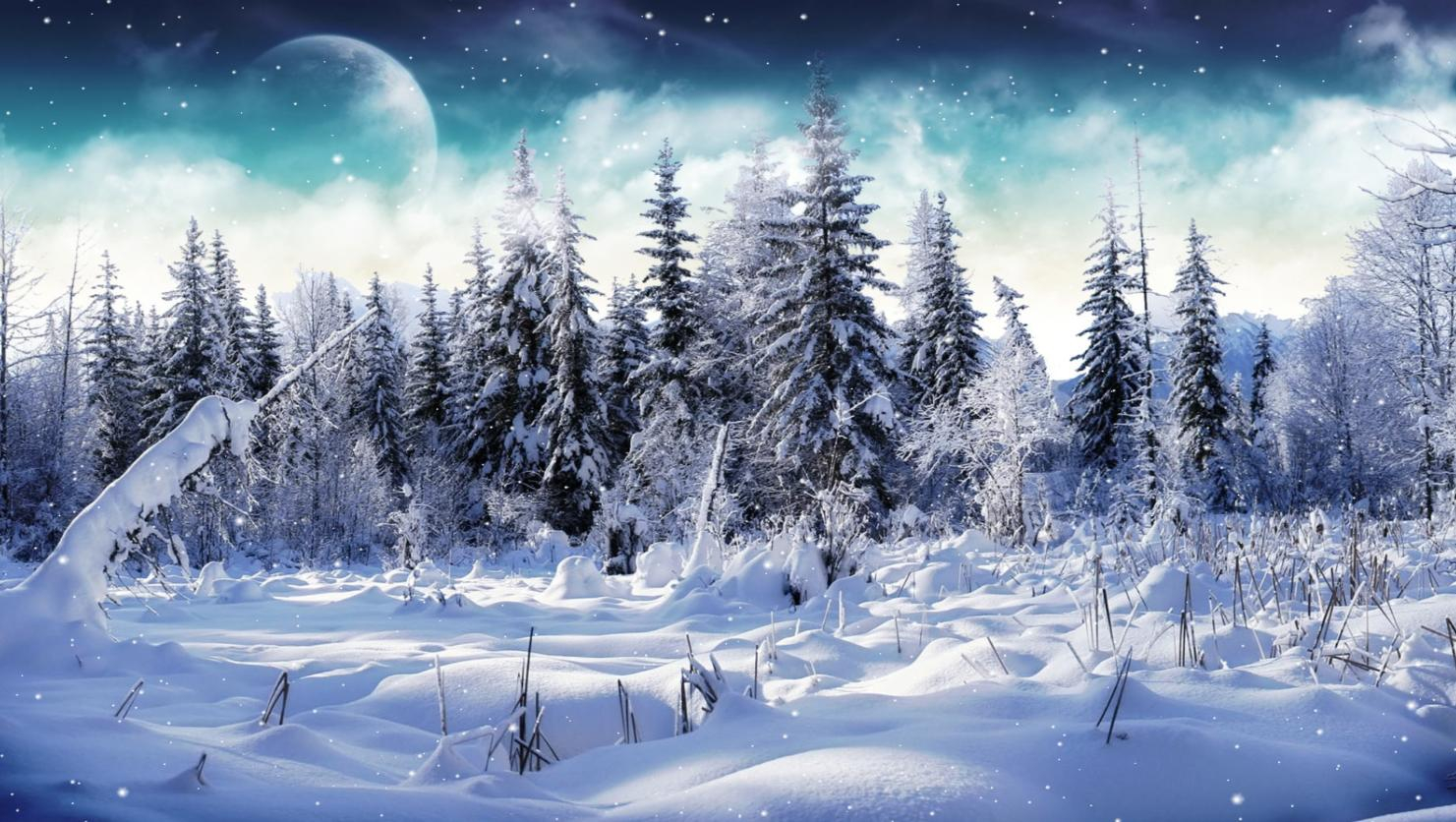 Cold Winter Screensaver   Animated Wallpaper[h33t][Screensavers 1481x836