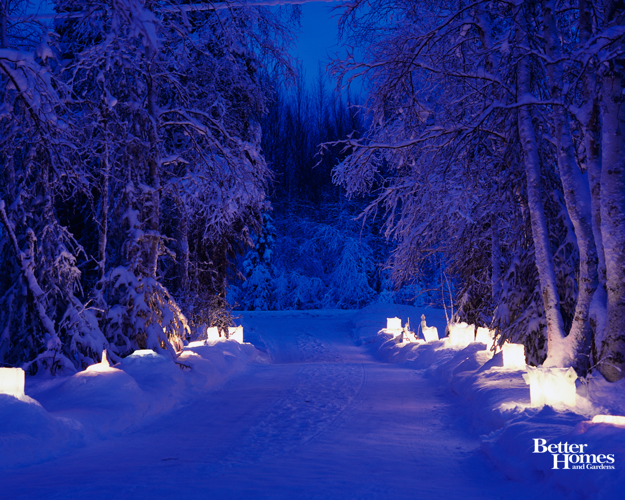 Winter Wonder Desktop Wallpapers 1282x1027