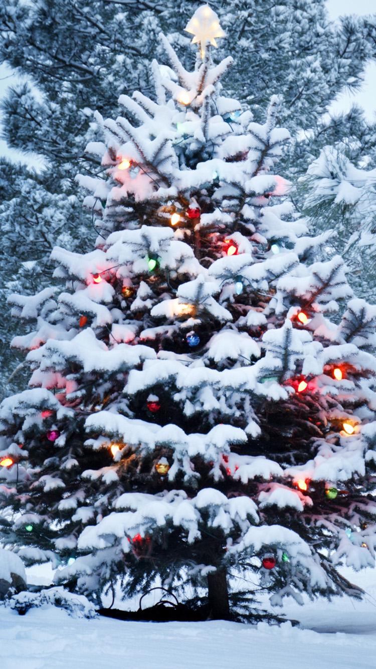 Christmas lights background tumblr christmas tree blur tablet phone - Snow Christmas Tree Iphone 6 Wallpaper Hd Iphone 6 Wallpaper