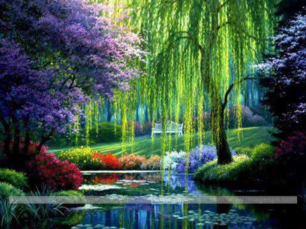 nature wallpaper related keywords - photo #7