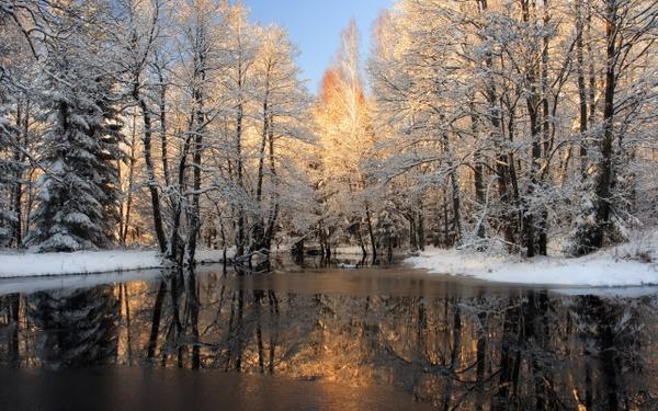 ... winter scenes 2560x1600 wallpaper – Winter Wallpapers – Desktop