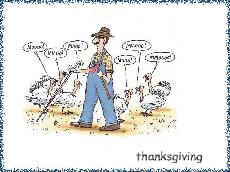 free fun thanksgiving wallpapers - photo #15
