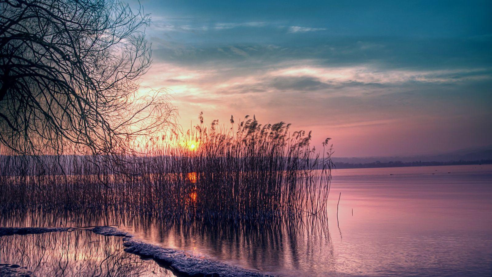 Twilight beautiful landscape quiet lake reed sunset wallpaper 1600x900