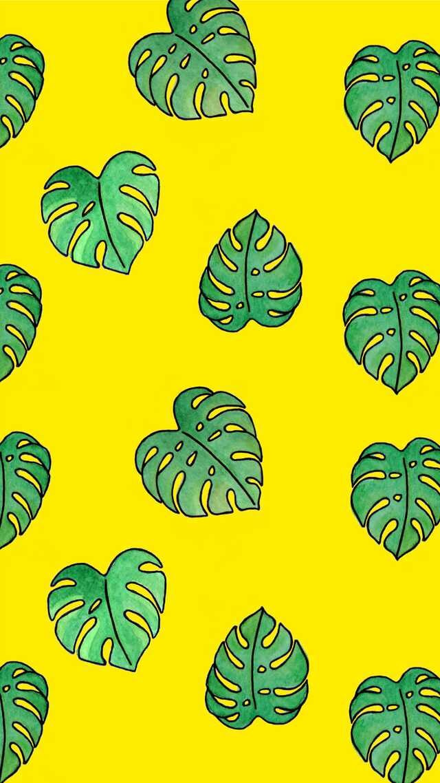 Wallpaper Yellow And Backgrounds Image   Snapchat Backgrounds 640x1138