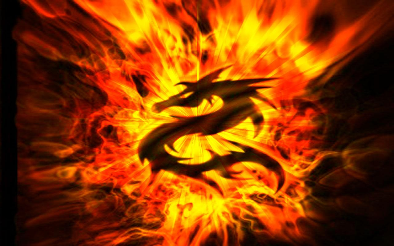 Fire Dragon HD Background Wallpapers 1781   HD Wallpapers Site 1280x800
